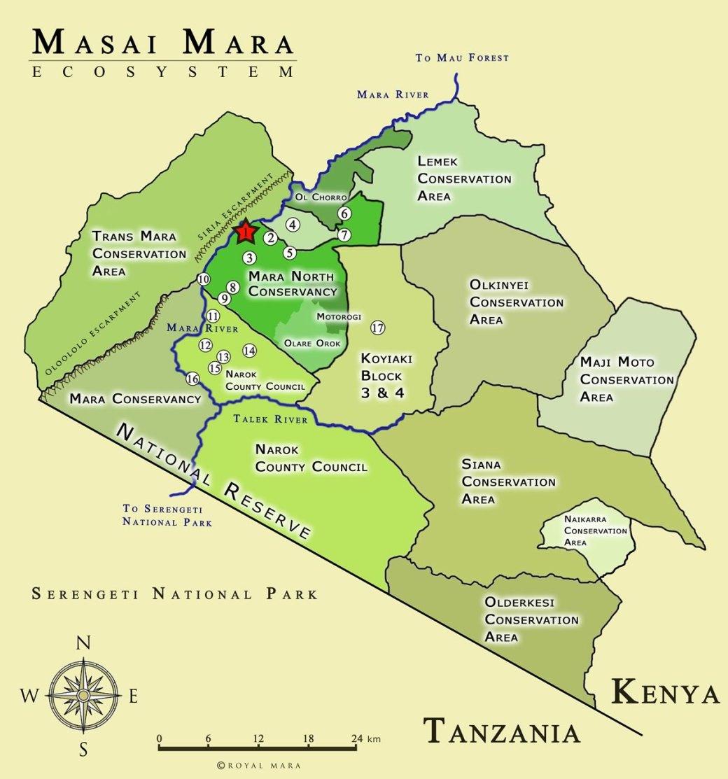 masai_mara_ecosystem